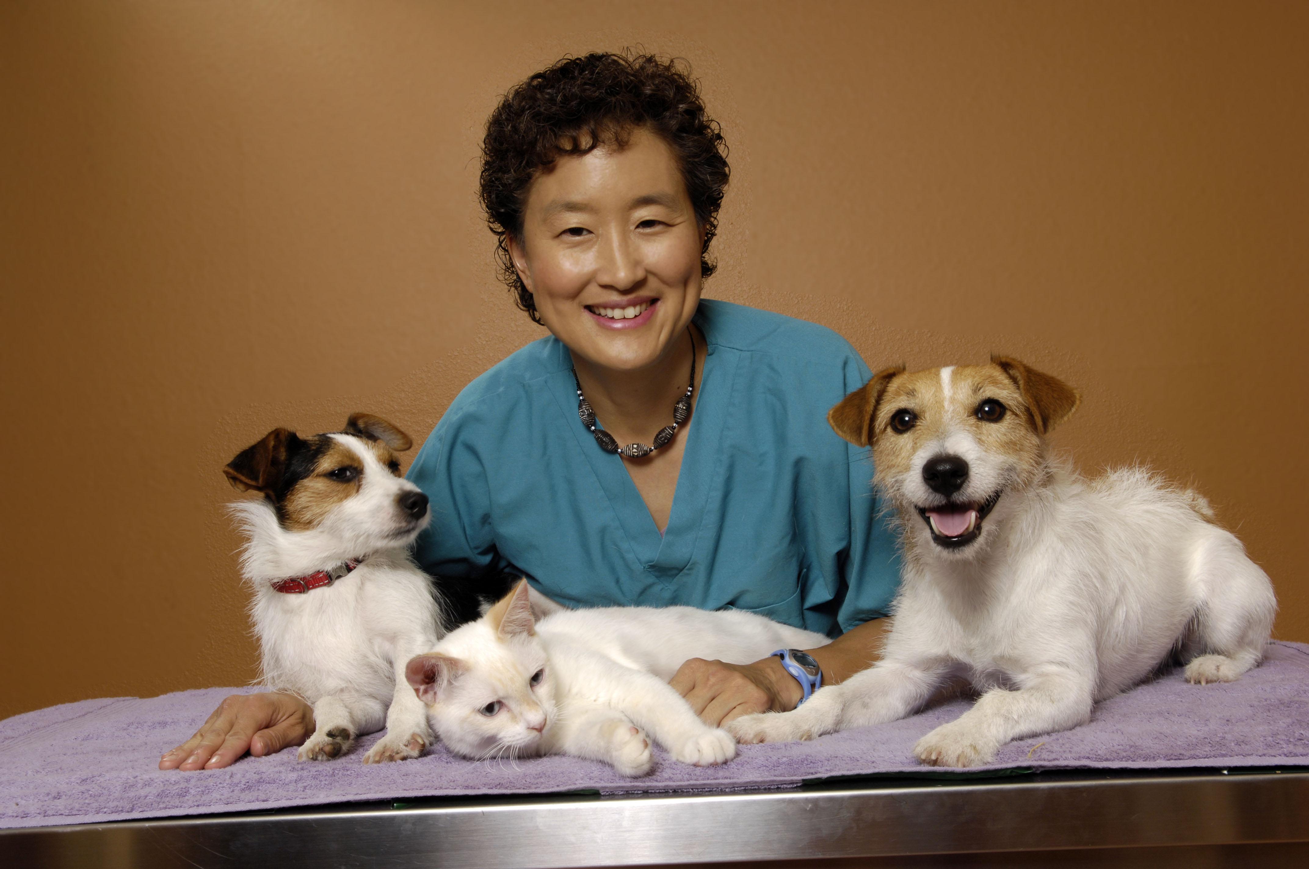 Dr Sofia Yin