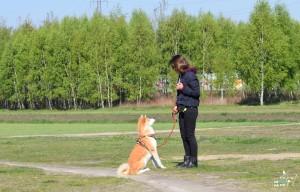 szkolenie