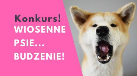 Konkurs: Wiosenne psie-budzenie!