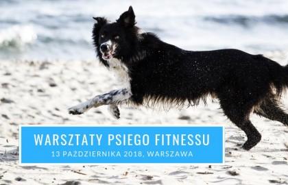 warsztaty-fitness