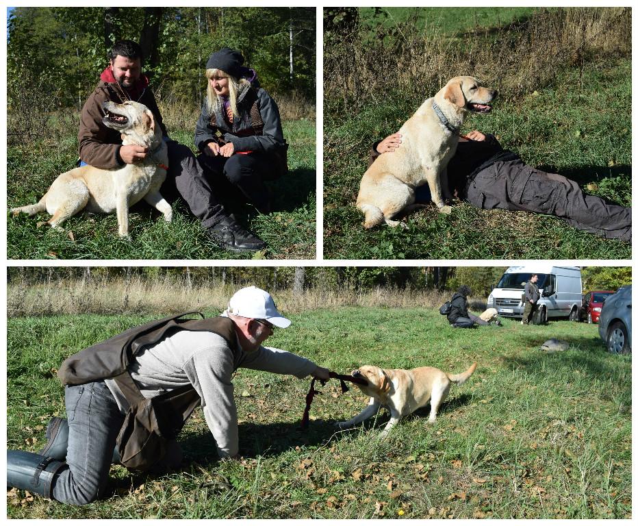 Nie samą pracą pies i człowiek żyją, czyli atmosfera pikniku na poważych zawodach ;)